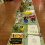 museo piante grasse 4