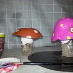 funghi colorati